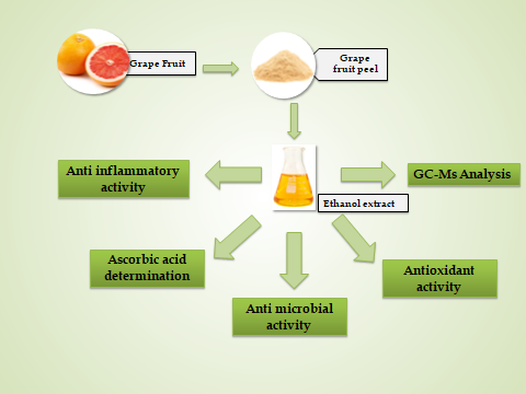 UMST-Phytochemical-investigation-antimicrobial-anti-inflammatory-antioxidant-Sudan2019